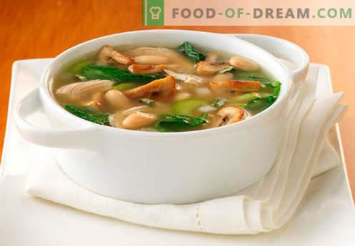 Grybų sriubos sriuba - geriausi receptai. Kaip tinkamai ir skaniai virti sriuba grybų sultinyje.