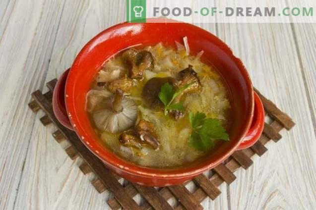 Zupa z kapusty grzybowej z kapustą