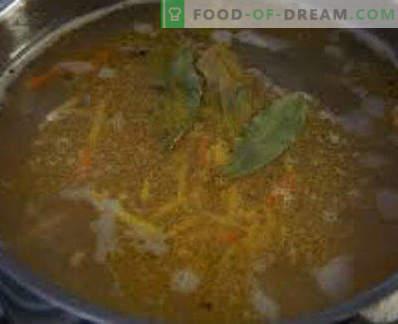 Zupa ze świeżo mrożonej makreli, przepisy ze zdjęciami. Jak gotować zupę z makreli