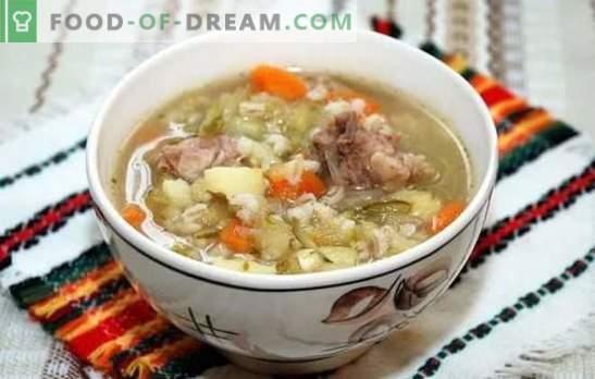 Pickle con pollo y cebada perlada: recetas, secretos, trucos. Cómo cocinar un delicioso encurtido de pollo con cebada