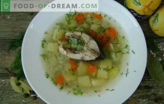 Zupa z karpia - pachnący i zdrowy pierwszy kurs. Przepisy zupa karpia: klasyczna, z żółtkiem, proso, jęczmieniem perłowym itp.