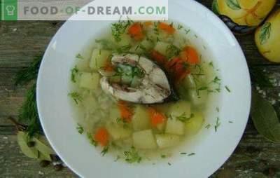 Karpfenfischsuppe - ein wohlriechender und gesunder erster Gang. Rezepte für Karpfensuppe: klassisch, mit Eigelb, Hirse, Gerste usw.