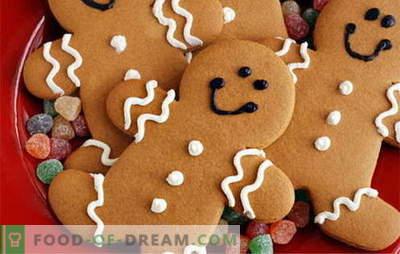 Cookie-urile de turtă dulce - cele mai bune rețete. Cum să gătești cookie-urile de turtă dulce.