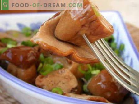 Marynowane grzyby - najlepsze przepisy. Jak właściwie i smacznie gotować marynowane grzyby.