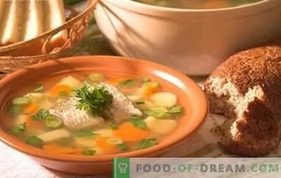 Zupa rybna okoń - pyszne zupy w domu. Jak ugotować ucho z okonia: tajemnice, przepisy kulinarne, wskazówki
