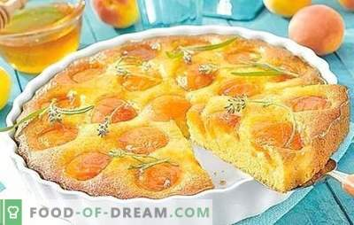 Pie with apricots on kefir - cook bright and tasty. Top 6 best recipes for pies with apricots on yogurt