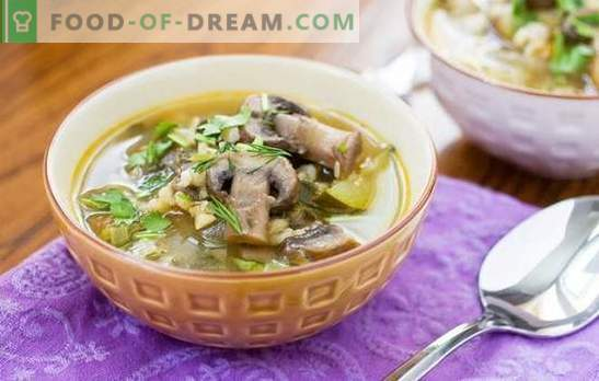 Mushroom soup with pearl barley is a hearty and easy-to-cook dish. Original recipes of mushroom soup with pearl barley