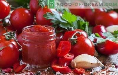 Ketchup domowej roboty jest przydatny i dość prosty. Ciekawe domowe przepisy na ketchup z pomidorów, papryki, agrestu, jabłek, śliwek i wiśni