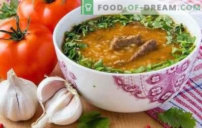 Kharcho auf Georgisch ist eine traditionelle Suppe der georgischen Küche. Wie man Kharcho auf Georgisch mit Rindfleisch, Lamm