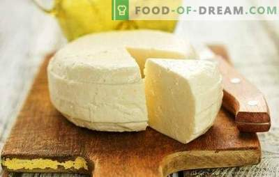 Homemade Suluguni - przepis z serca z serca dla miłośników produkcji sera. Jak zrobić ser suluguni w domu?