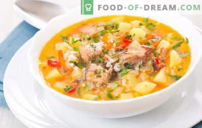 Zupa rybna z ryżem jest lekkim, aromatycznym pierwszym daniem na lunch. Najlepsze przepisy na gotowanie zupy rybnej z ryżem