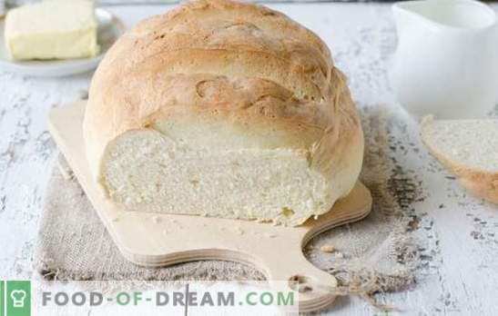Biały chleb w piekarniku - pyszne domowe ciasta. Najlepsze przepisy na biały chleb w piekarniku na wodzie, mleku, jogurcie