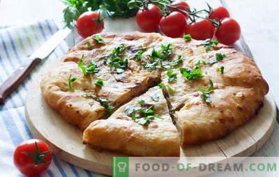 Ciasto mięsne na kefir: ptysie, z drożdżami i bez. Proste i szybkie przepisy na gotowanie mięsnego ciasta na jogurcie