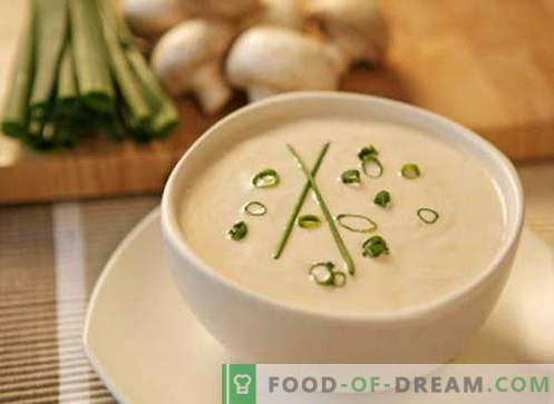 Zupa kremowa - najlepsze przepisy. Jak prawidłowo i gotować zupę kremową.
