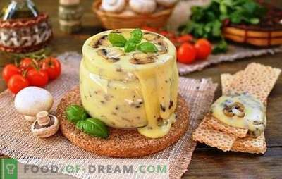 Gotowany profesjonalnie przetworzony ser z twarogu w domu. Urlop smakowy w domu z serem topionym w domu
