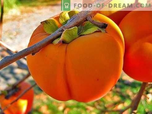 Persimmon - opis, przydatne właściwości, wykorzystanie w gotowaniu. Przepisy z persimmon.