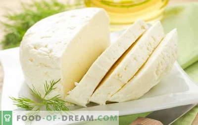 Najlepsze przepisy na domowy ser z mleka krowiego. Ser z mleka krowiego: podstawowe zasady wytwarzania sera domowej roboty