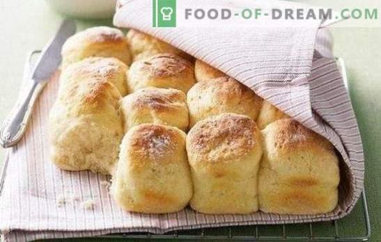 Mâncăruri de chefir: deserturi, băuturi, brânzeturi, asta puteți face din kefir. Produse de patiserie din chefirul expirat - o necesitate!