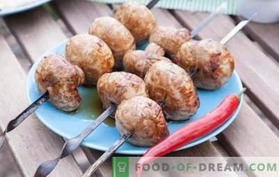 Grillitud šampinjonid - algne eelroog! Kuidas valmistada maitsvaid šampinjone grillil: retseptid ja nüansid