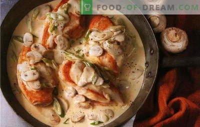 Parimad retseptid kanafilee valmistamiseks koorekastmes. Kuidas valmistada kanafileed koorekastmes pannil ja ahjus