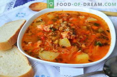 Zupa Kharcho - najlepsze przepisy. Jak prawidłowo i smacznie gotować zupę kharcho.