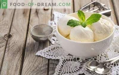 Lody z mleka w domu to naturalny produkt! Przepisy na pyszne lody z mleka w domu