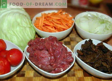 Kapusta z mięsem - najlepsze przepisy. Jak właściwie i smacznie gotować kapustę z mięsem.