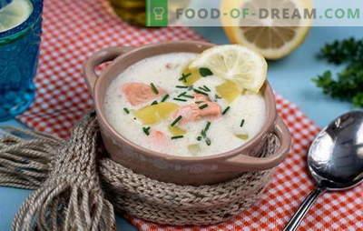 Gotowanie pysznej zupy fińskiej: przepisy kulinarne. Fińskie zupy ze świeżych, smażonych, wędzonych i konserwowanych czerwonych ryb