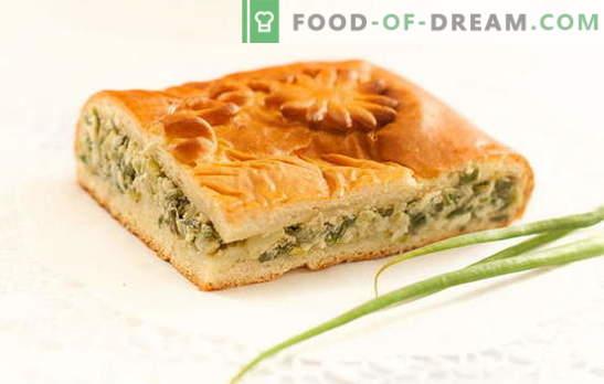 Ciasto zielonej cebuli na jogurt - pyszne domowe ciasta. Przepisy na placki z zieloną cebulką na jogurt w piekarniku i multicooker