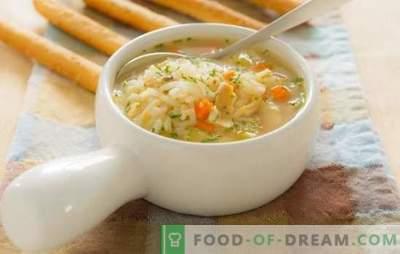 Zupy rybne dla dzieci: cechy wprowadzenia do diety. Przepisy na zupy rybne dla dzieci ze świeżych ryb i konserwy