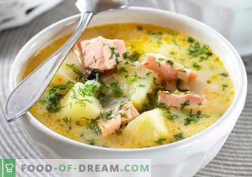 Zupa z łososia - najlepsze przepisy. Jak prawidłowo i smacznie gotować zupę z łososia.