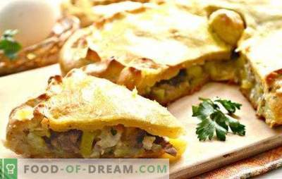 Vištienos kurnik su bulvėmis: žingsnis po žingsnio rusų pyragas. Kaip paruošti vištienos vištieną su bulvėmis (nuoseklūs receptai)