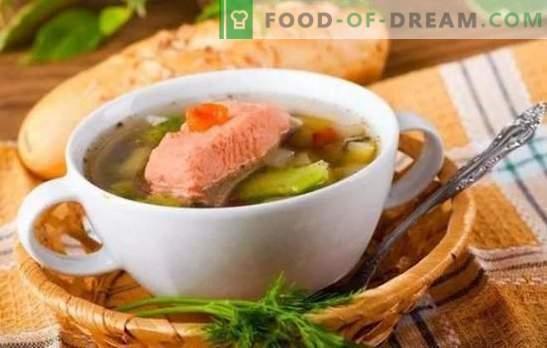 Zupa rybna z pstrąga: zalety ciała i nienaganny smak na tej samej płycie. Najlepsze przepisy na zupę pstrągową