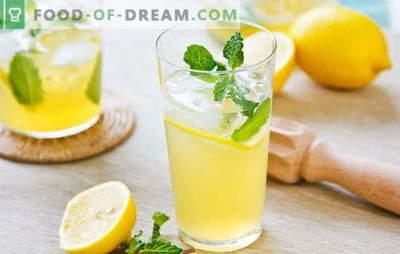 Napój cytrynowy - energia i witaminy w jednej szklance. Przepisy na napoje cytrynowe: zimna lemoniada lub ciepły napar