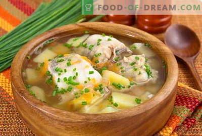 Zupa rybna - najlepsze przepisy. Jak prawidłowo i smacznie gotować zupę rybną.
