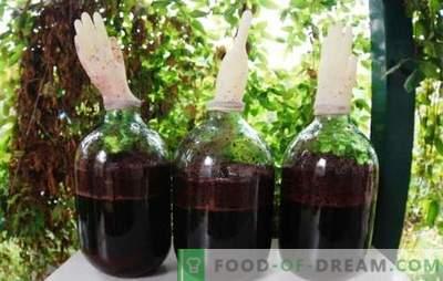 Domowe wino winogronowe z rękawicą - wyjście! Technologia wytwarzania domowego wina winogronowego z rękawicą