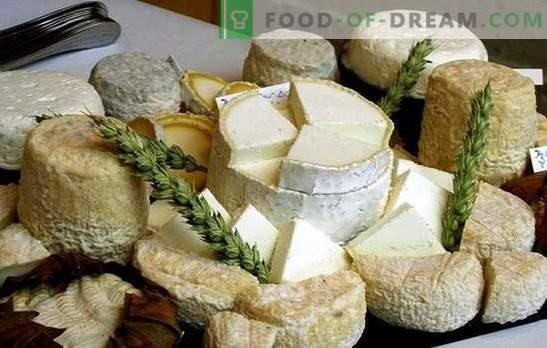 Jak zrobić kozi ser w domu: pomysły dla małych firm, z uwzględnieniem sankcji. Domowy kozi ser - lepszy!