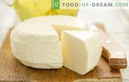 Ser domowy: przepis krok po kroku na naturalny produkt mleczny bez dodatków. Sekrety pysznego domowego sera (przepisy krok po kroku)
