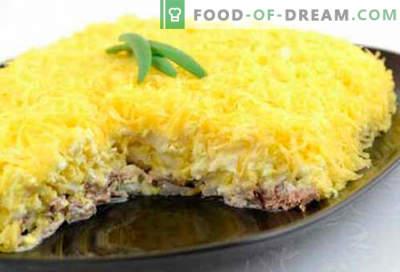 """Sałatka """"Męskie marzenia"""" - pięć najlepszych przepisów. Jak właściwie i smacznie gotować sałatkę """"Męskie marzenia""""."""