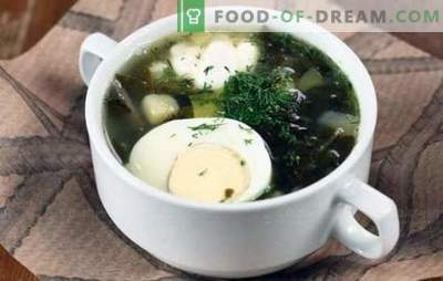 Green soup - vitamin charge and bright taste! Recipes of various green soup with sorrel and with cabbage, mushrooms, fish, nettles, beans