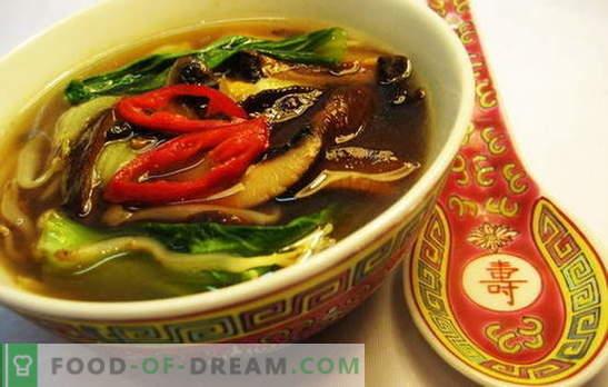 Sopa chinesa - a caminho da sabedoria oriental. Receitas de sopas chinesas com macarrão, arroz, frutos do mar, tomate, funchoza e peixe