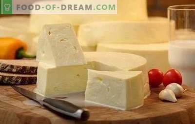 Jak szybko gotować suluguni w domu: przepis na młody biały ser. Gotowanie delikatnego sera suluguni w domu