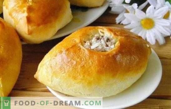 Paszteciki z mielonym mięsem i ryżem - odżywcze, smaczne, domowe! Gotowanie pieczonych, smażonych i francuskich ciast z mięsem mielonym i ryżem