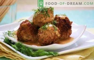 Gyvatės iš maltos mėsos su ryžiais ir padažu: virimo paslaptys. Ežerų virimas iš maltos mėsos su ryžiais pomidorais, grietine, daržovių padažu