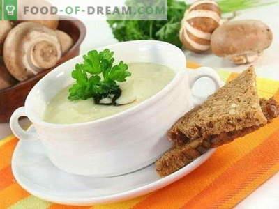 Zupa grzybowa - najlepsze przepisy. Jak prawidłowo i smacznie gotować zupę grzybową.