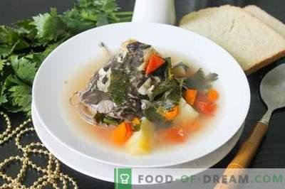 Zupa sumowa - jak gotować właściwie i smacznie (przepis ze zdjęciami)