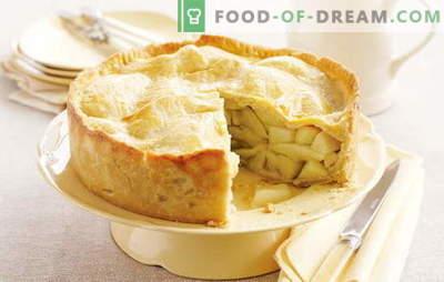 Appeltaart in een slowcooker is een geurig gebakje dat je terugvoert naar je kindertijd. De beste recepten voor appeltaart in een slow cooker