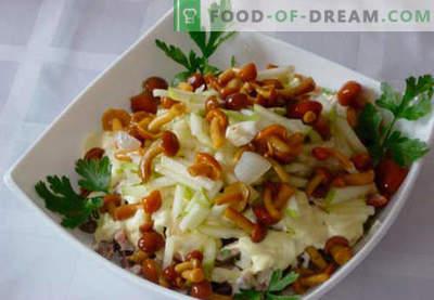 Salada com cogumelos em conserva - cinco melhores receitas. Como corretamente e saboroso para preparar uma salada com cogumelos em conserva.