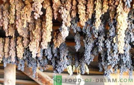 Cómo hacer pasas con uvas en casa - ¡ahorre la cosecha! Todas las formas y consejos sobre cómo hacer buenas pasas con uvas en casa