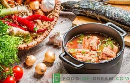Czerwona zupa rybna - doskonały smak i maksymalna korzyść. Wybór najlepszych receptur czerwonej zupy rybnej z kaszą jaglaną, pomidorami, czerwonym kawiorem